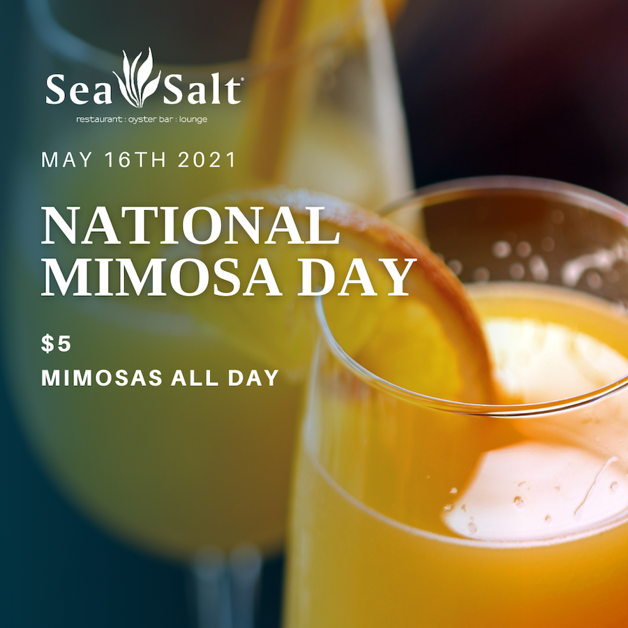 Mimosa Day 2-squashed